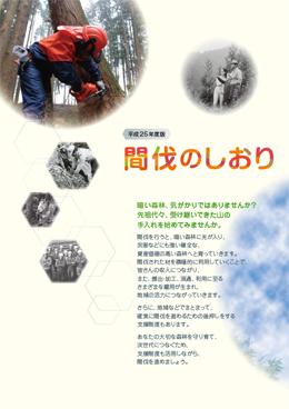 pf_kanbatsu20131.jpg